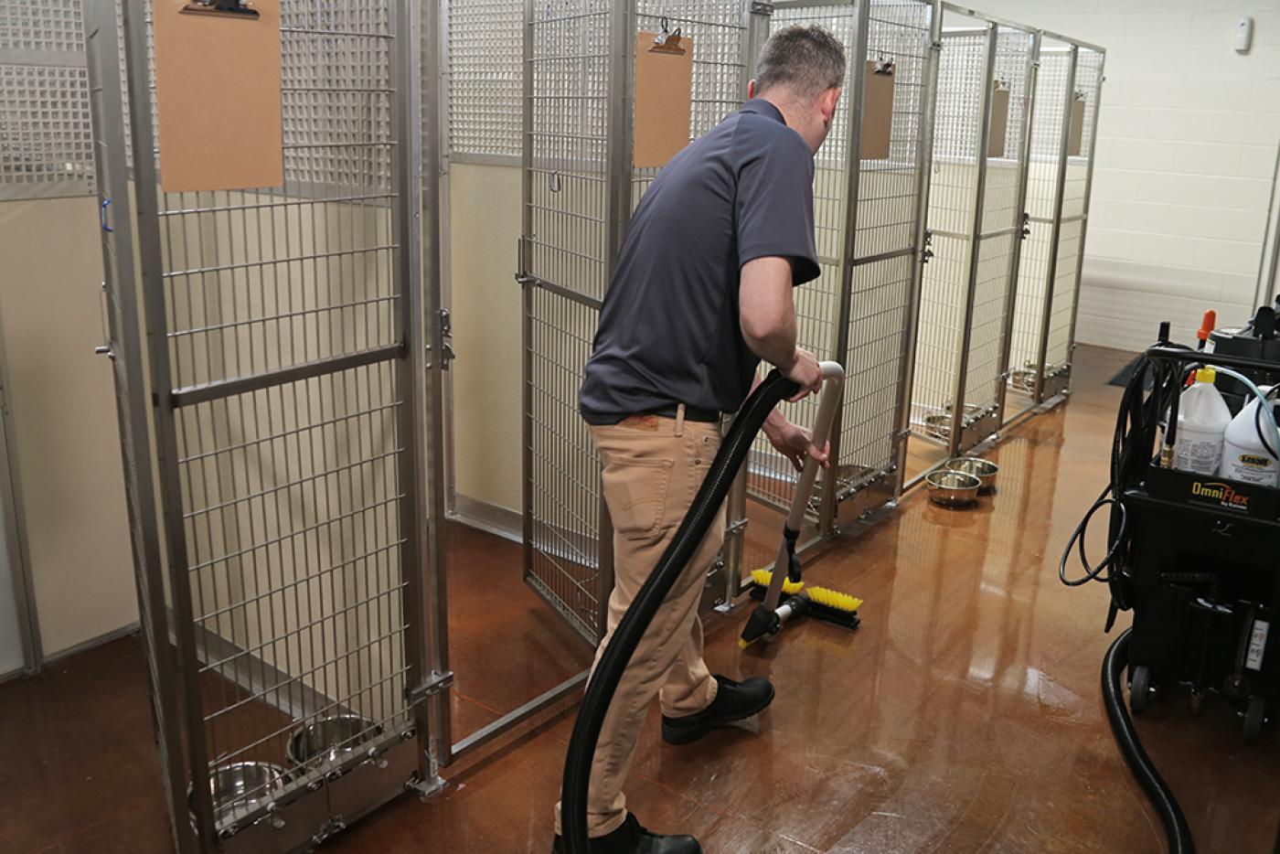best cleaner for dog kennels