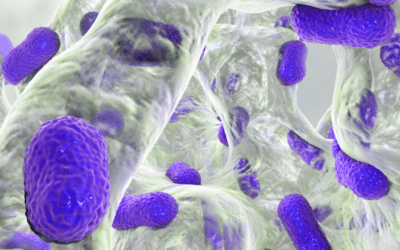 What Cleaning Pros Need to Know about Biofilm and COVID
